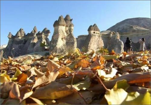 Stone Age Travel