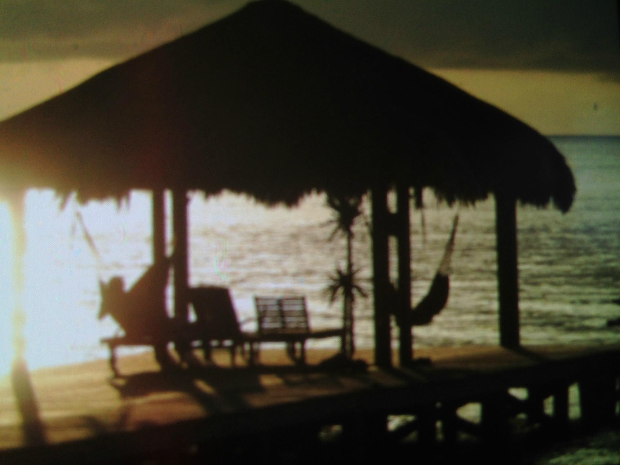 Xbalanque resort roatan honduras west bay hotel reviews photos price comparison tripadvisor