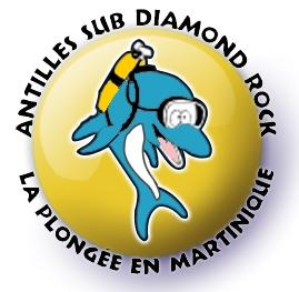 Antilles Sub Diamond Rock
