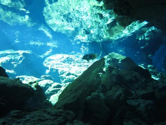 Dive Mexico Caves