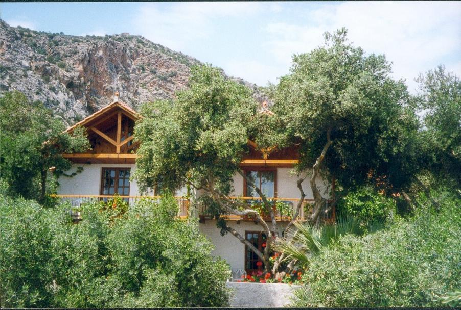 Olive Tree Cottages