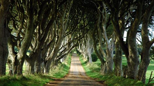 Brit Movie Tours - Game of Thrones Tour