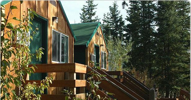 Denali Park Salmon Bake Cabins