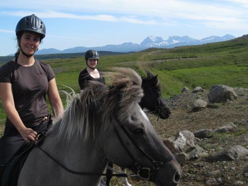 Stori-Bakki Riding Tours