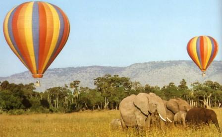 Right Choice Tours & Safaris