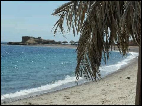 Castle Beach Sinai