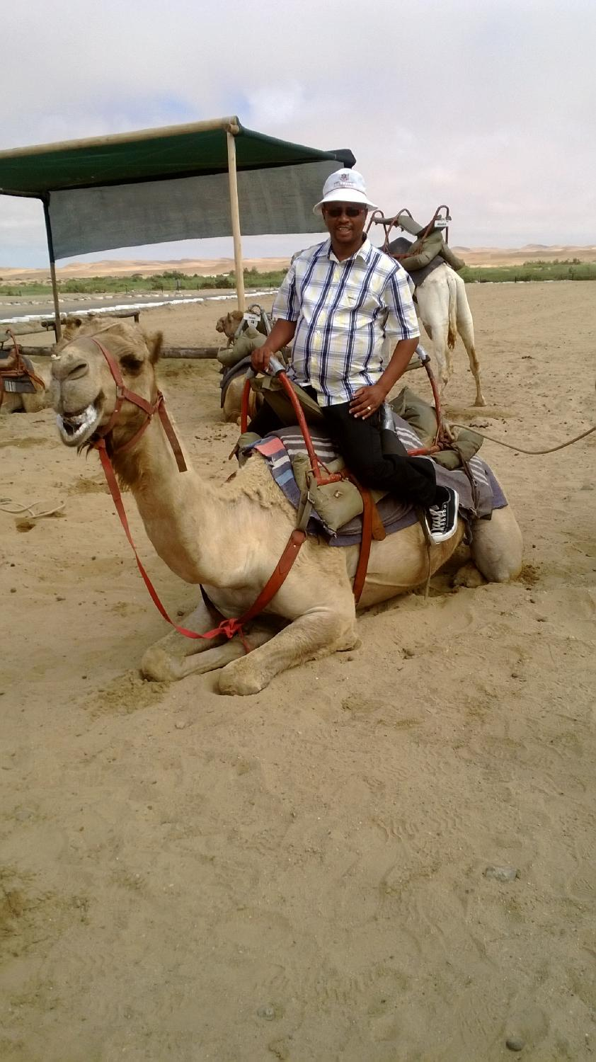 Camel rides also feature in the Namib Desert