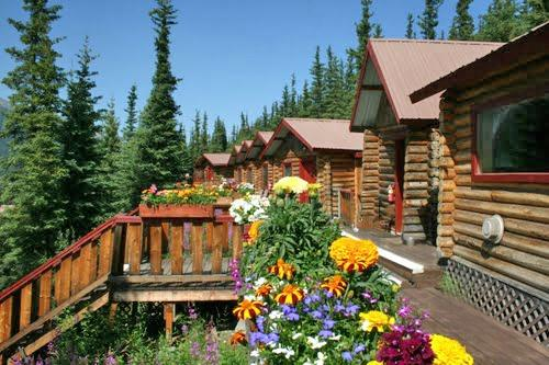 The 5 Best Hotels In Denali National Park And Preserve Ak For 2017 With Prices From 105 Tripadvisor