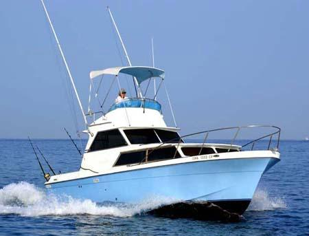 Thrill Seeker Sportfishing