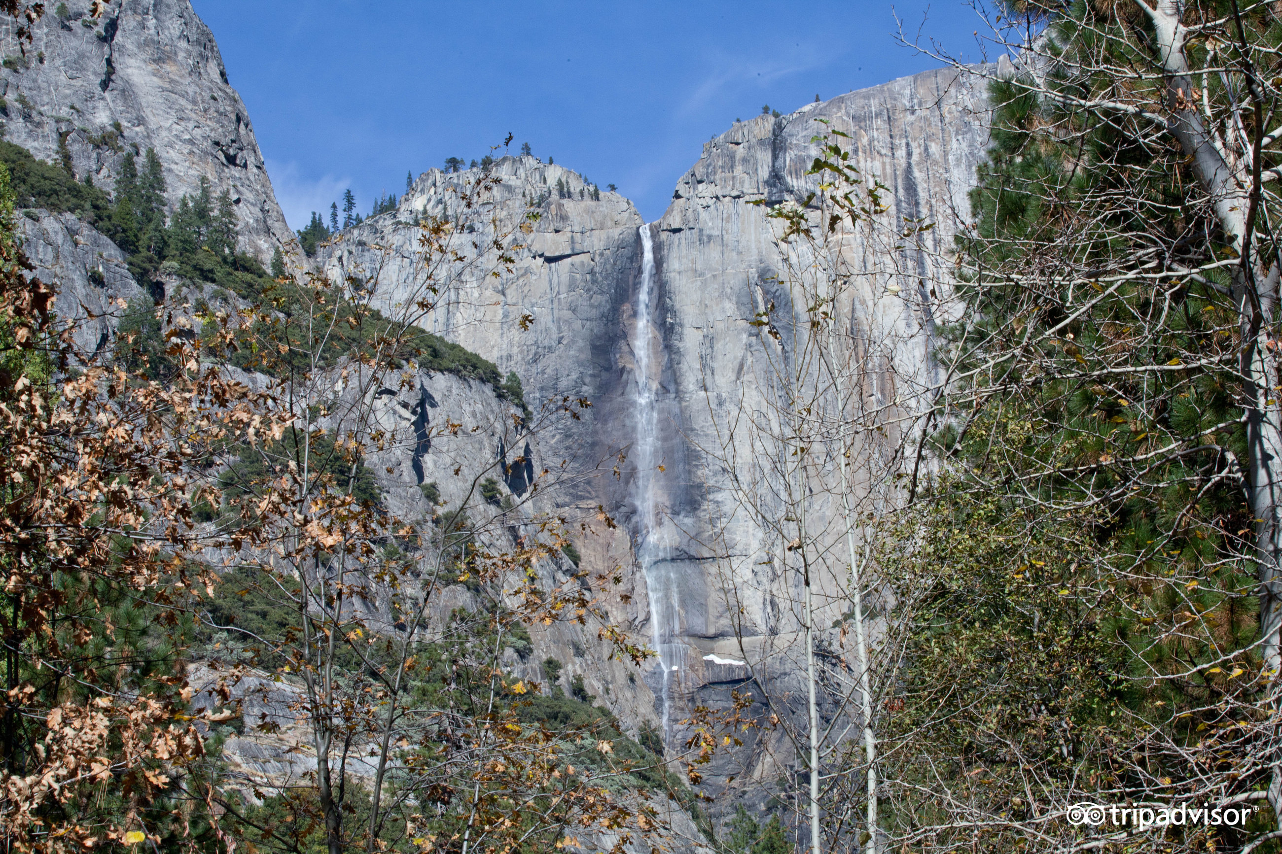yosemite national park milfs dating site Structure and origins of glacial polish on yosemite's rocks geologists investigated glacial polish from yosemite national park to understand how it formed and what it can tell them about how glaciers move.