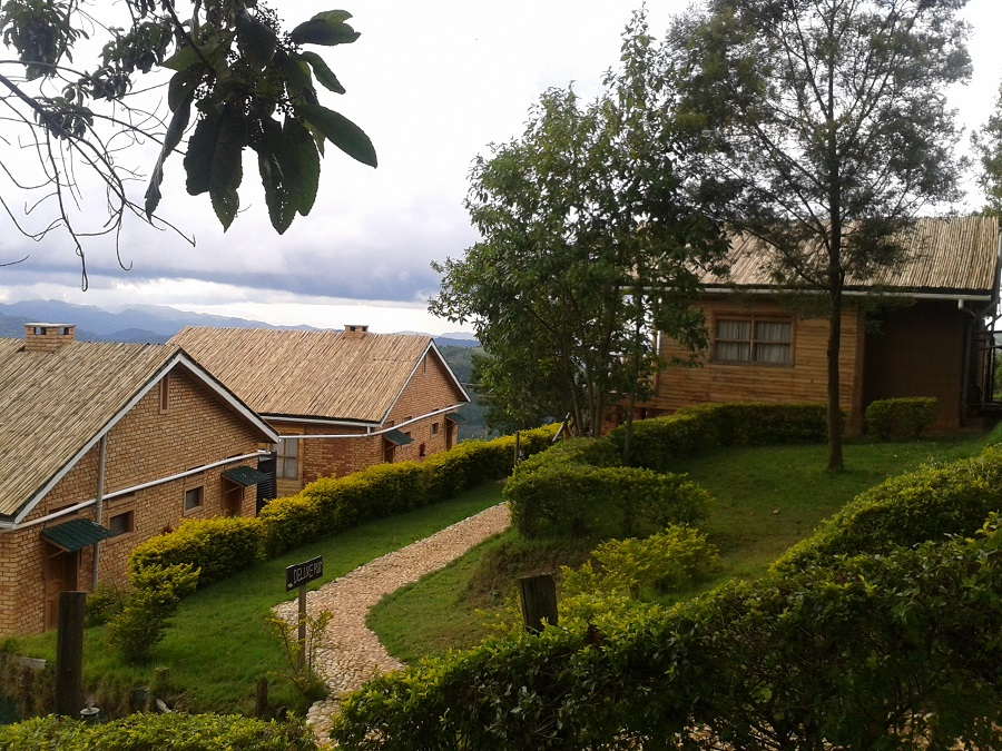 Ruhija Gorilla Safari Lodge