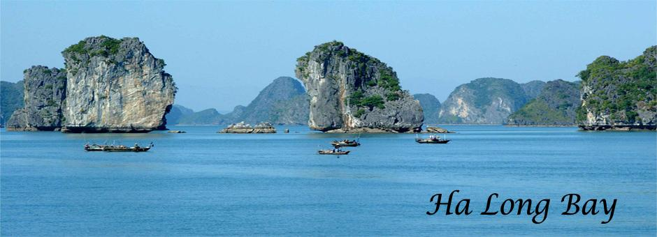 Duy Sang Travel - Day Tours