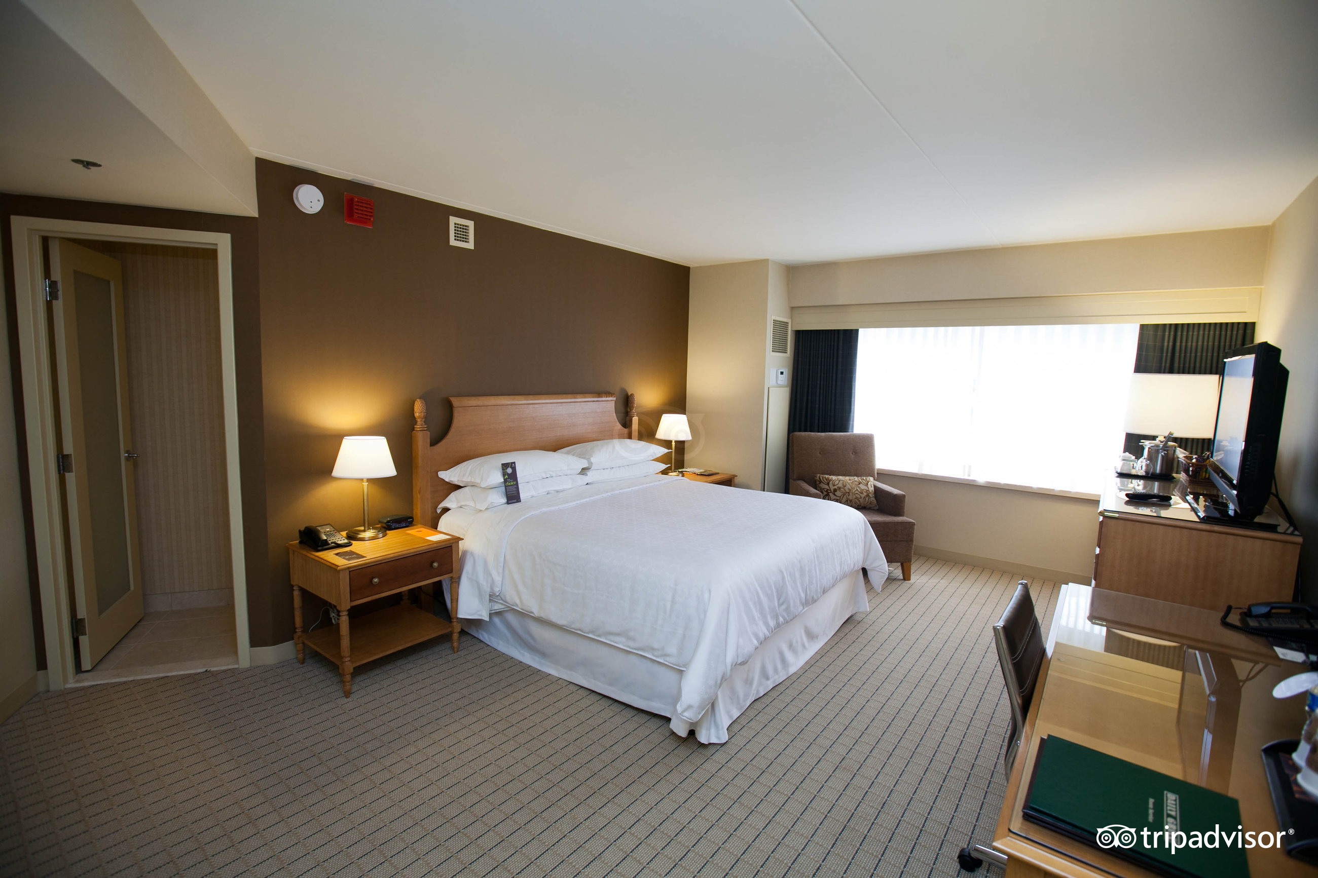 sheraton seattle hotel wa 2017 review family vacation critic