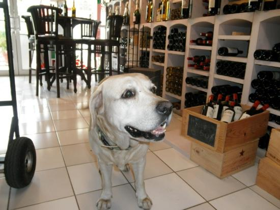 Select Wine Cellar