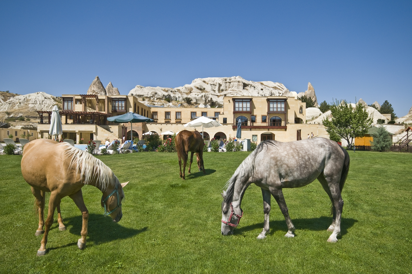 Cappadocia Tourist Hotel