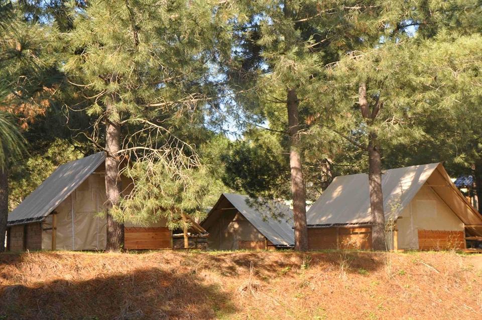 Camping Olva Les Eucalyptus