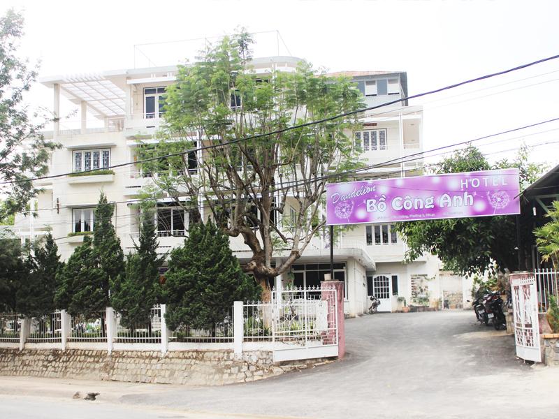 Dandelion Hotel
