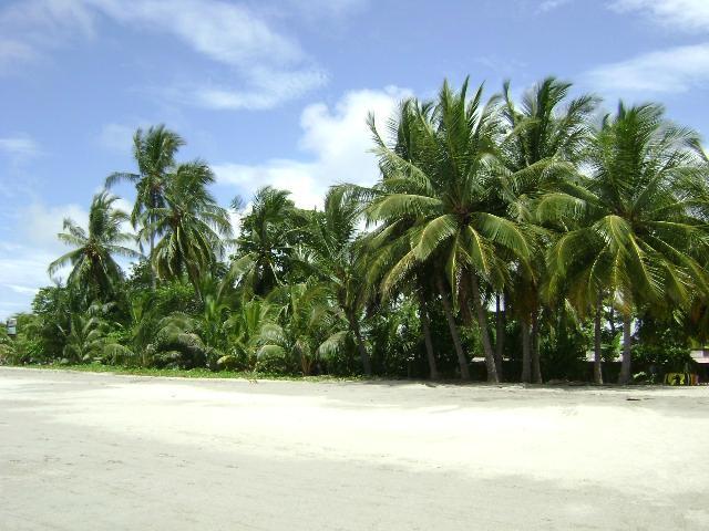 Пляж Тамадиндо в Коста-Рике
