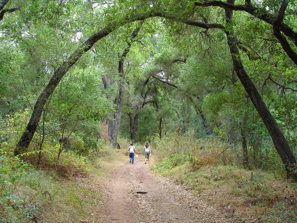 Pratt Trail
