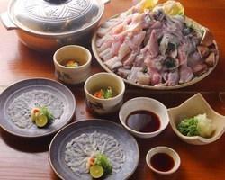 Fish Dining Rokkon