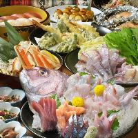 Seafood Izakaya Sakanaya-dojo Yokohamakannaikitaguchi