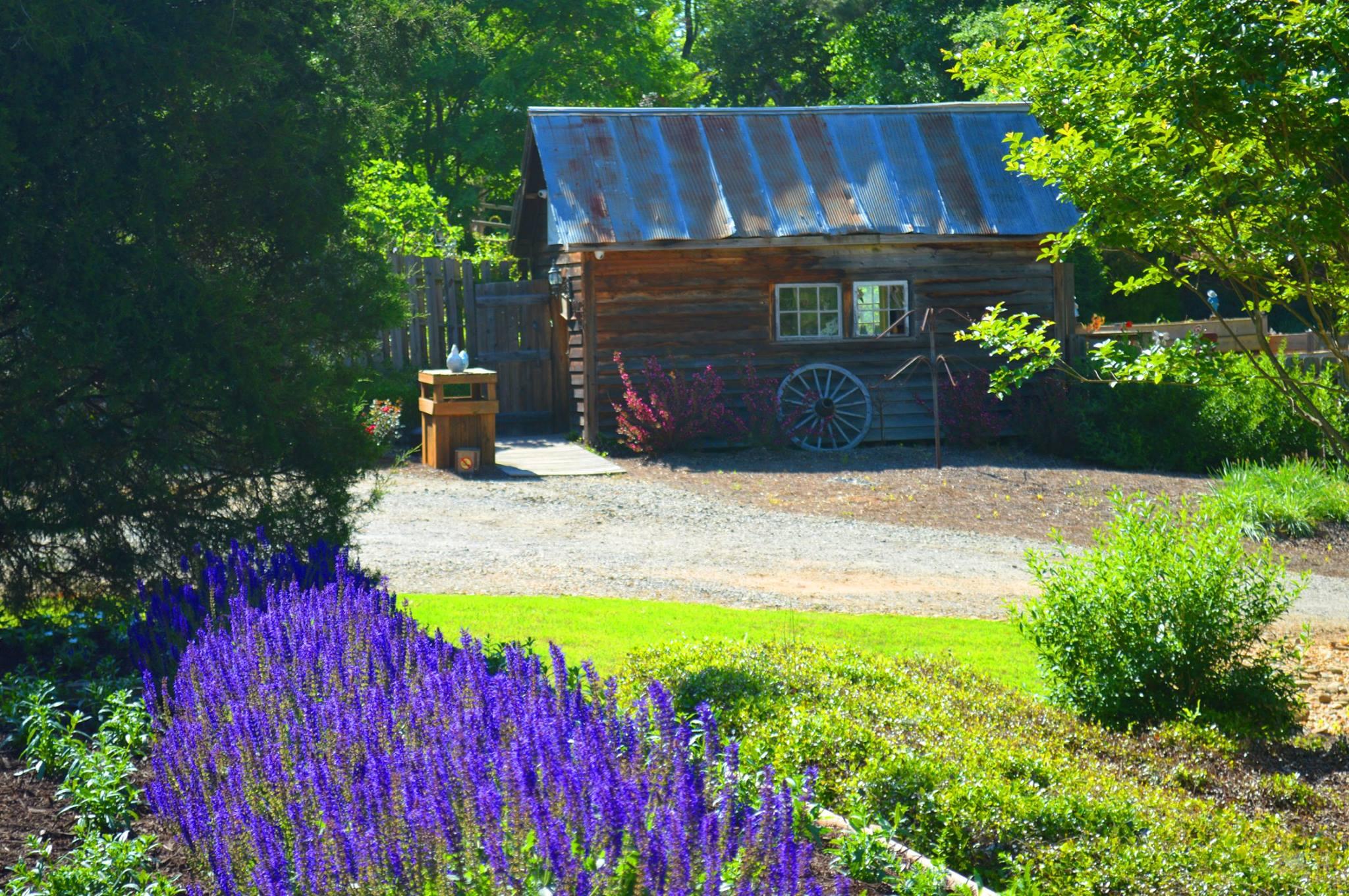 whimsical botanical gardens flovilla ga top tips