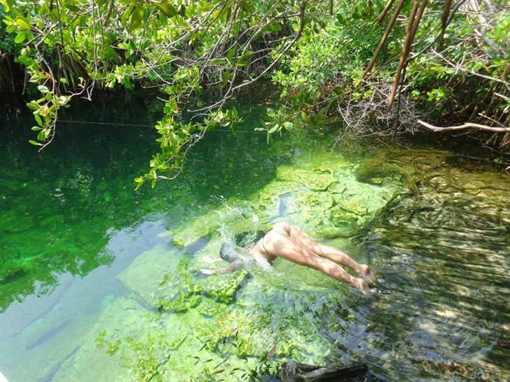 Cenote Xcacelito!