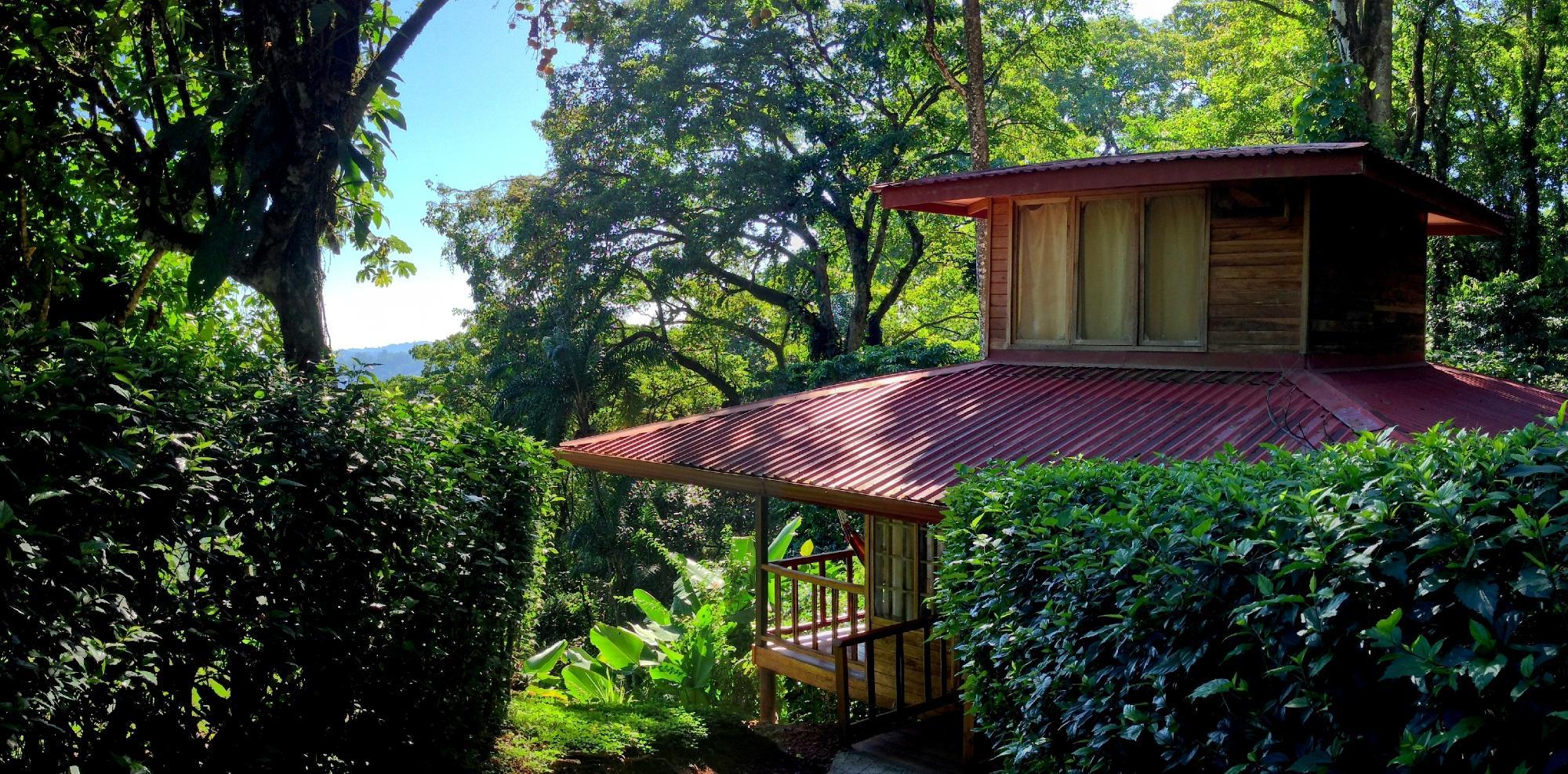 Samasati Retreat & Rainforest Sanctuary