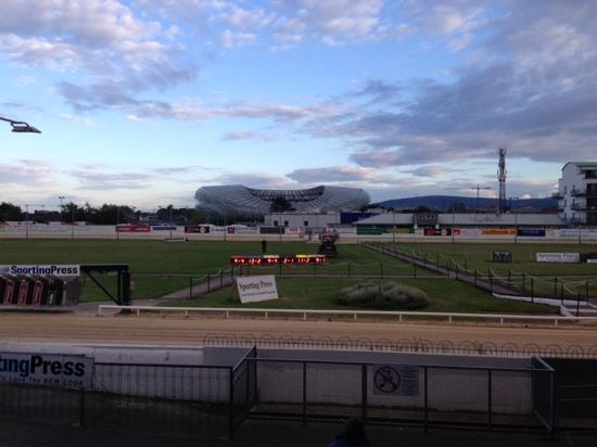 ‪Shelbourne Park Greyhound Stadium‬