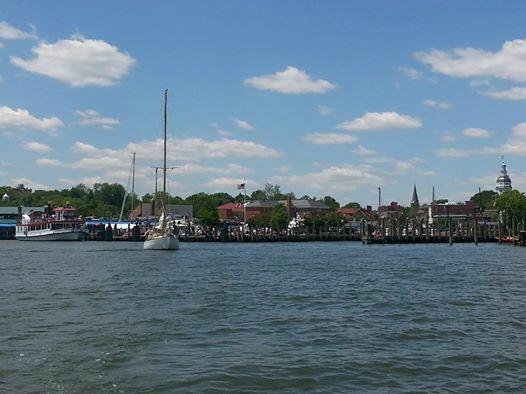 BayCat Sailing
