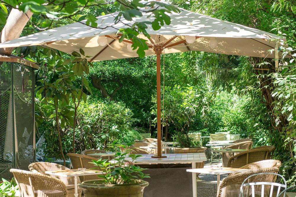 Le jardin du windsor nice restaurant reviews phone for Cafe du jardin london