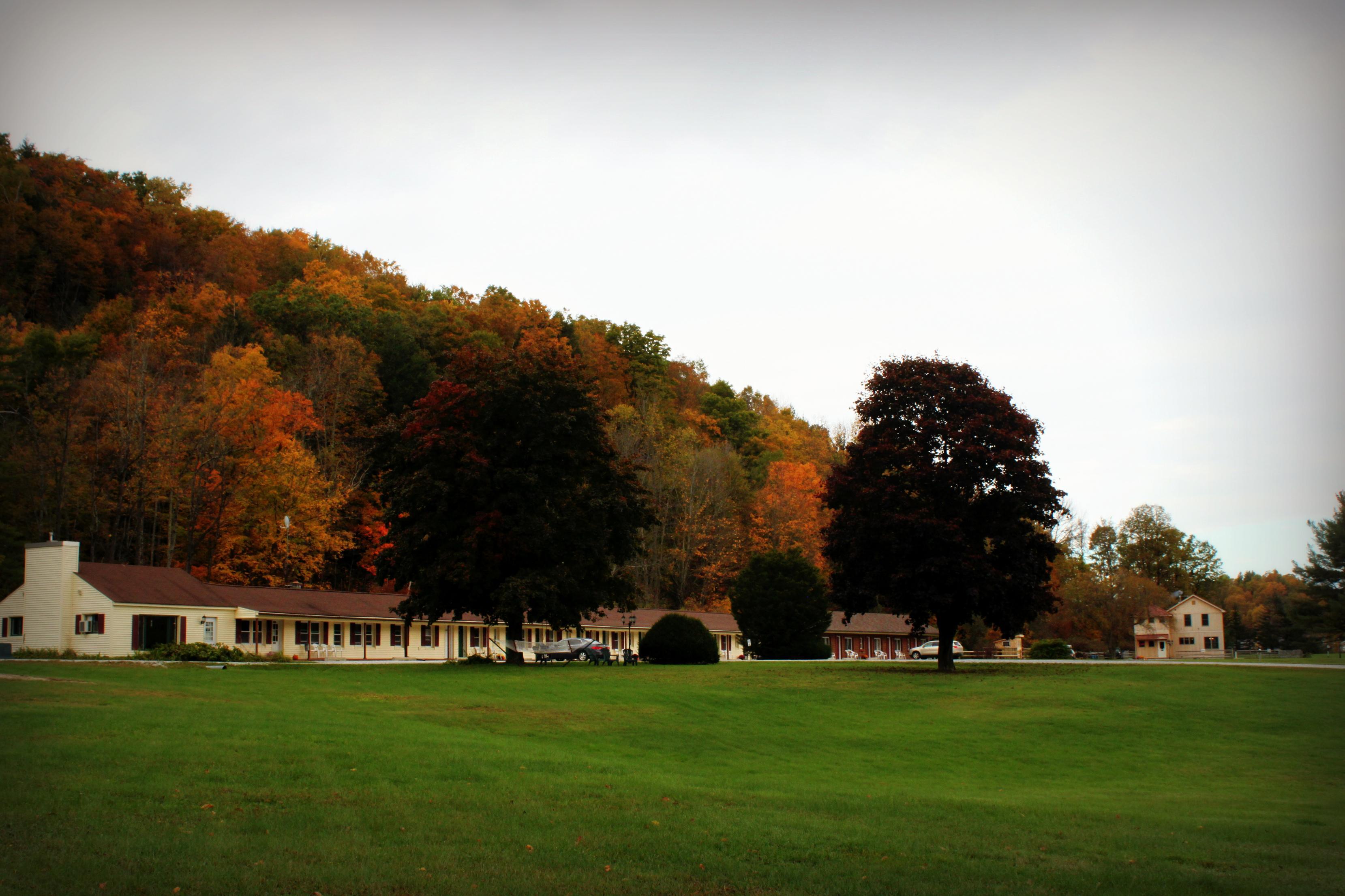 Brandon Motor Lodge