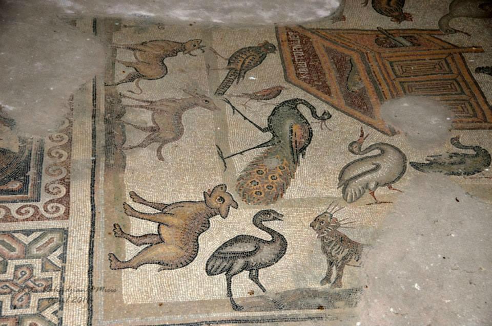 Misis Mosaic Museum - 아다나 - Misis Mosaic Museum의 리뷰 - 트립어드바이저