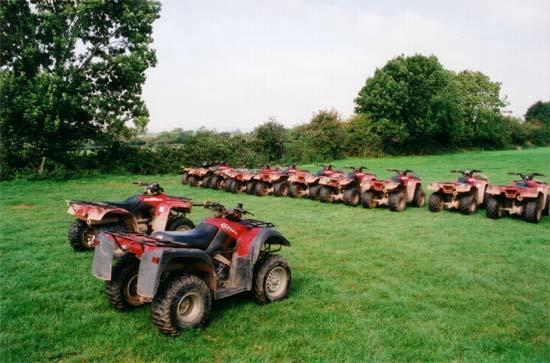 Bridgefield Buggies