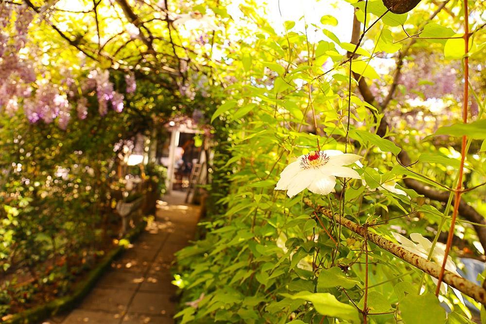 Le petit jardin milano ristorante recensioni numero di telefono foto tripadvisor - Le petit jardin watou creteil ...