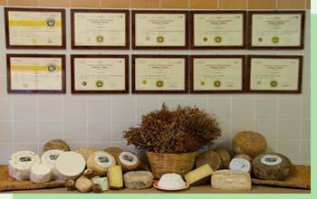 gennargentu formaggi