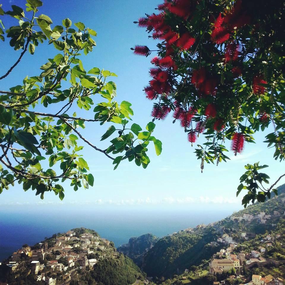Agriturismo Monte Brusara