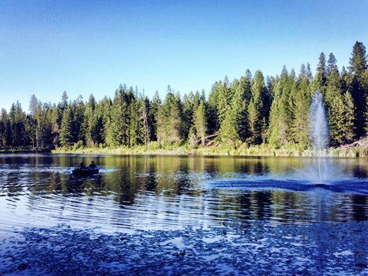 Newport/Little Diamond Lake KOA