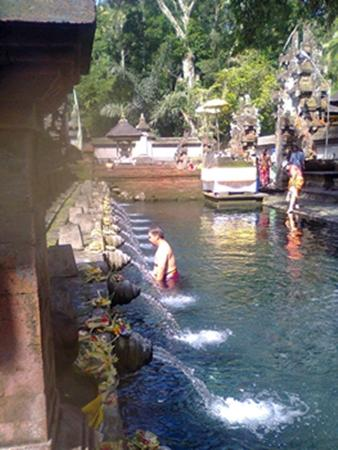 Bali to Bali Private Day Tours
