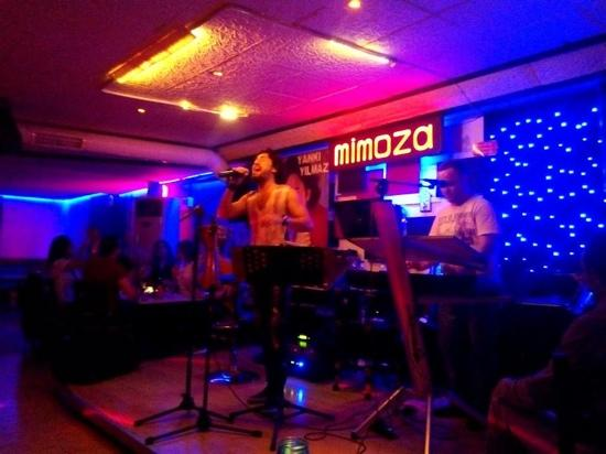 Mimoza Cafe Bar