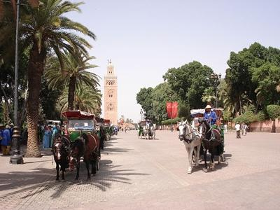 ‪Marrakech by Locals‬