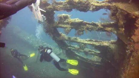 Hammerhead Bali Diving
