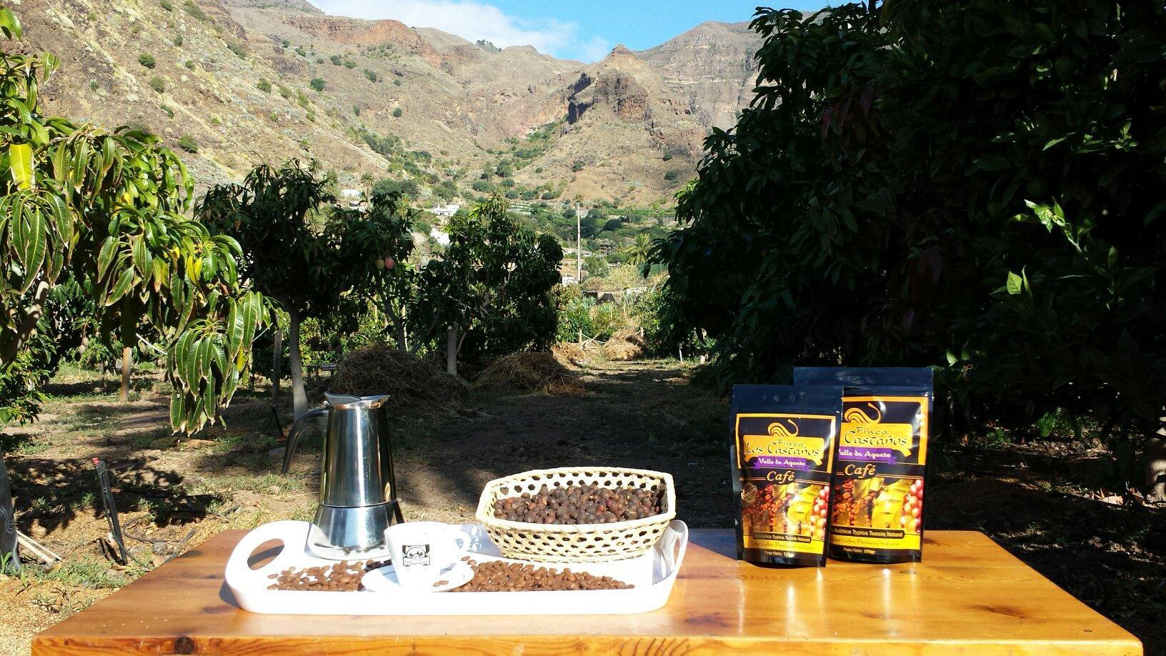 Virtual 90-Minute Coffee tour at Finca Los Castaños in Gran Canaria