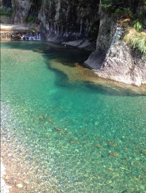 Things To Do in Gongyu Scenic Area, Restaurants in Gongyu Scenic Area