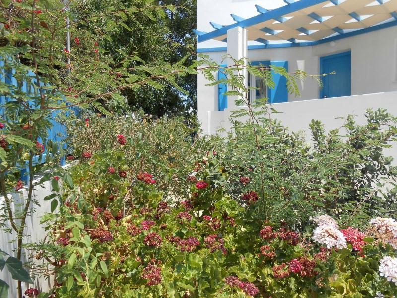 Livanios Studios and Apartments