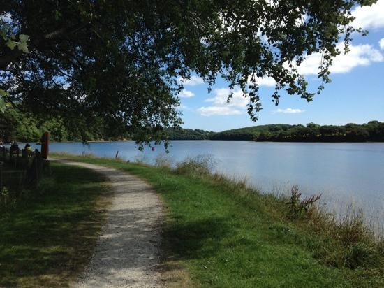 Boscawen Park