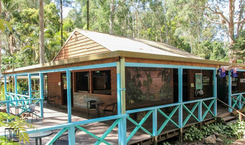 Koala Beach Resort Daintree