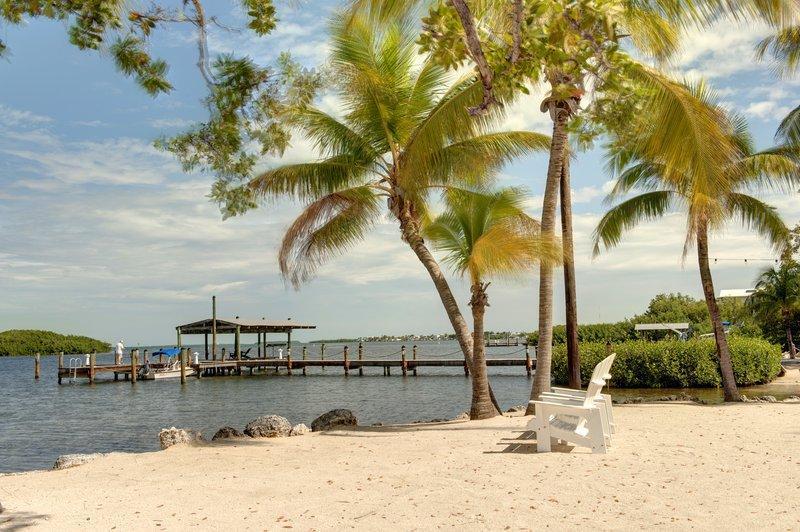 椰子棕櫚酒店
