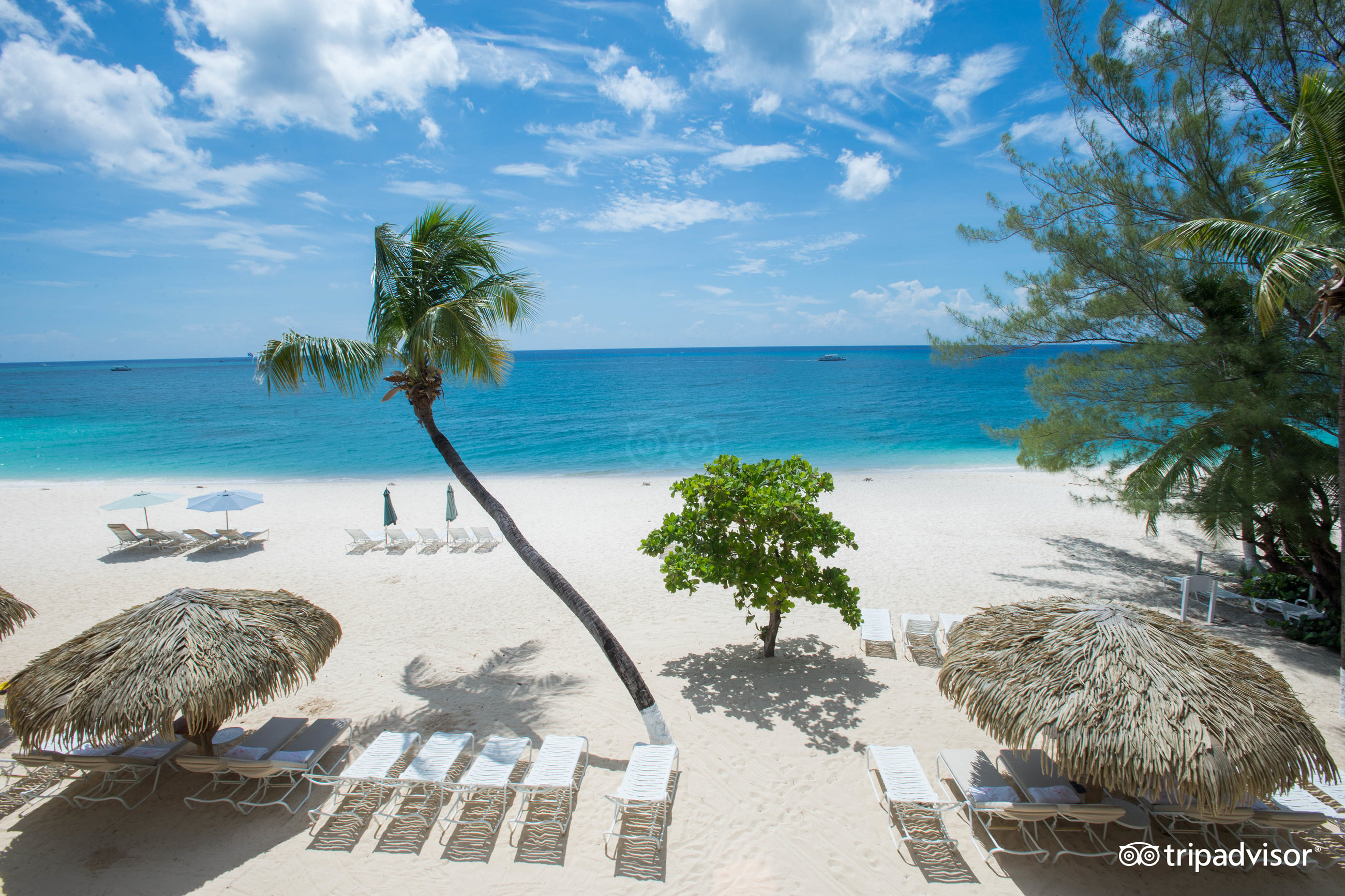 The Caribbean Club Seven Mile Beach 2018 Hotel Review