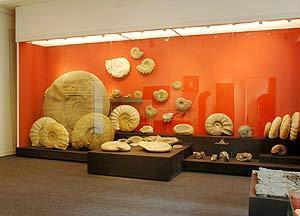 Mineralien Museum
